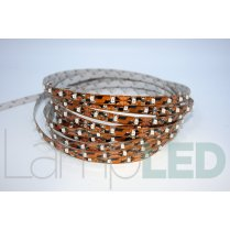 5M LED STRIP 3528 60LED PM 4.8 Watts Per M RED IP20